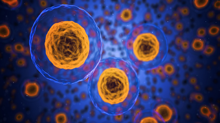 1380049667_cells450.png